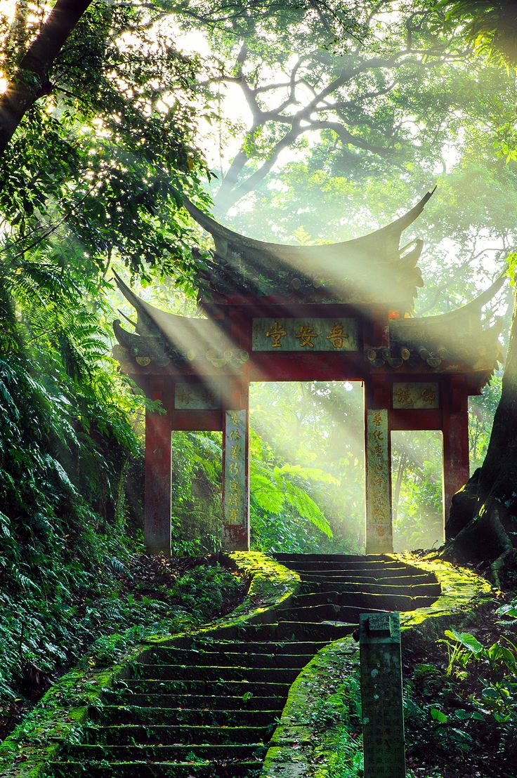 175 best sweet green images on pinterest for Jardines japoneses zen