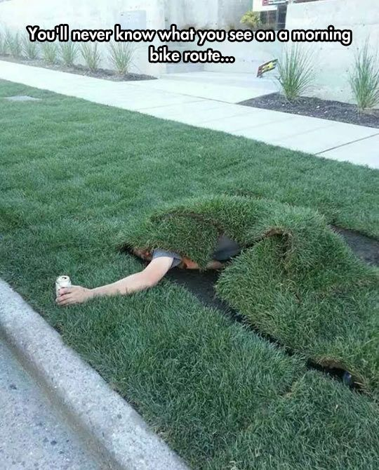 A cosplayer in action, apparently | That one particular blade of grass in my front lawn fandom <<< You have just won at life.