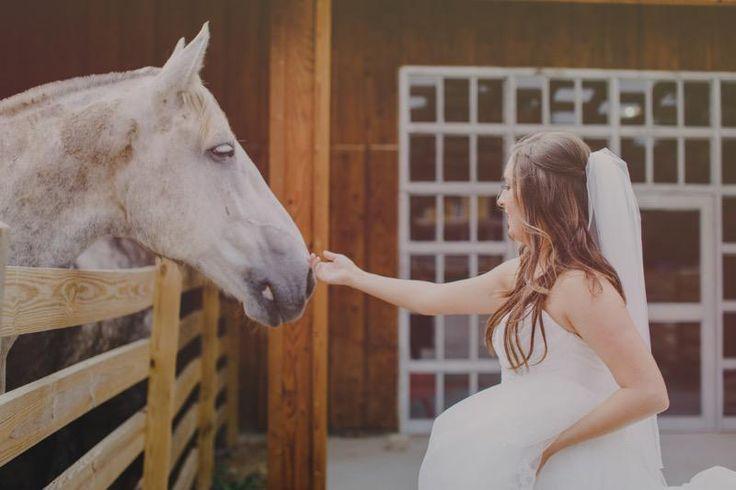 Melissa goodman wedding