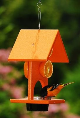 273 Best Images About Ww Birdhouses Squirrel Feeders