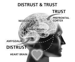 De la Desconfianza a la Confianza. Inteligencia Conversacional III