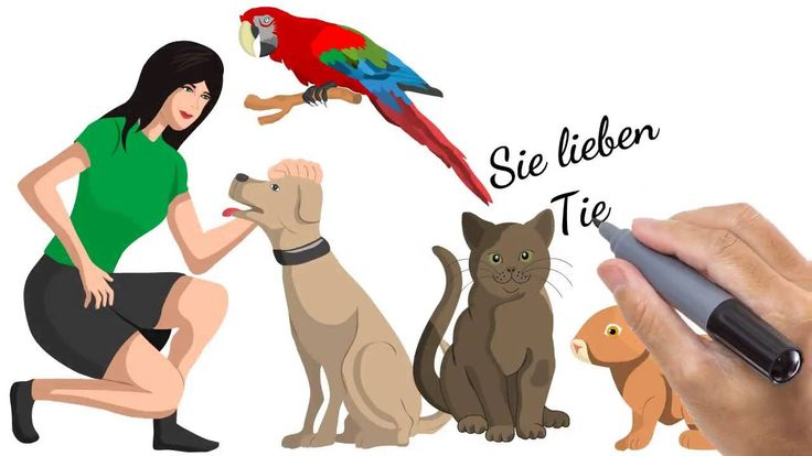 http://www.pet365.de/    Sie bieten eine Tierbetreuung an oder betreiben eine Hundepension? Sie suchen einen Hundesitter oder eine Katzenpension? Beides finden Sie auf pet365.de - dem neuen Tierbetreuungs-Port