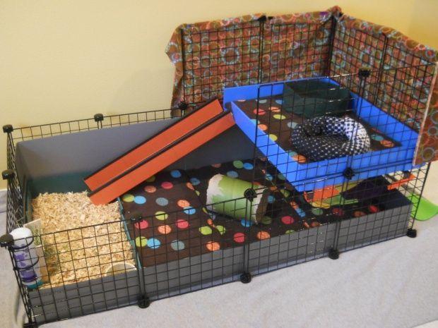 les 25 meilleures id es de la cat gorie cages pour cochons. Black Bedroom Furniture Sets. Home Design Ideas
