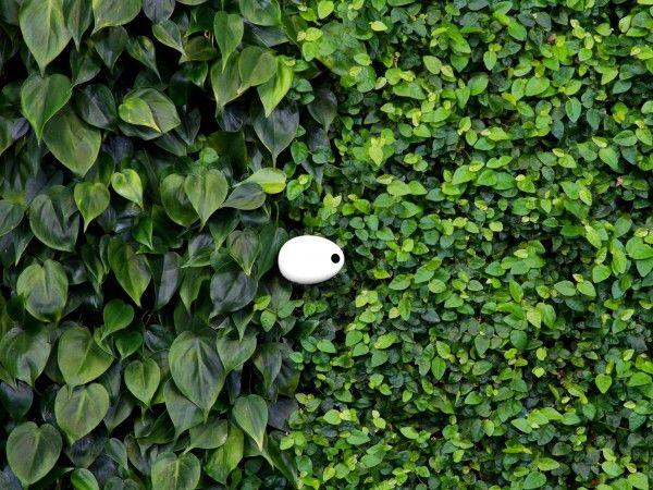 Koubachi gardening sensor | FUTU.PL