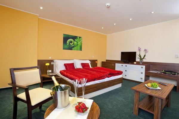 Apartmán FAMILY - http://www.1-2-3-ubytovanie.sk/hotel-viktor