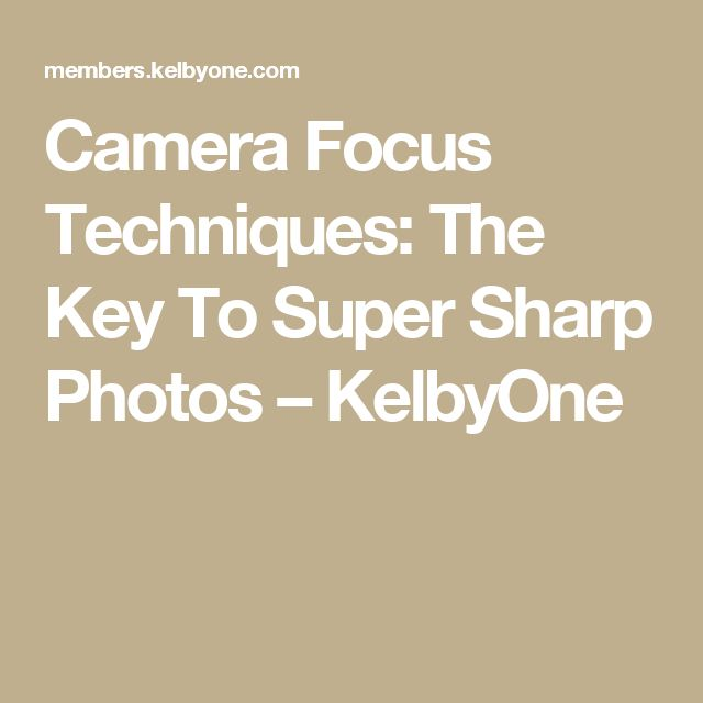 Camera Focus Techniques: The Key To Super Sharp Photos – KelbyOne