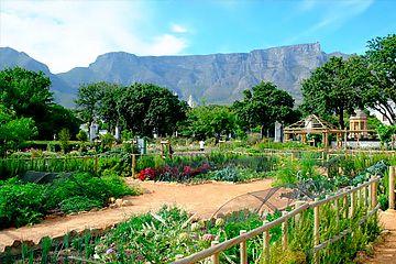 Avresa mot Sydafrika
