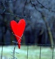 """""""Estar solteiro não significa, necessariamente, estar disponível. Às vezes, é preciso colocar uma placa de """"Não Perturbe"""" no coração."""""""