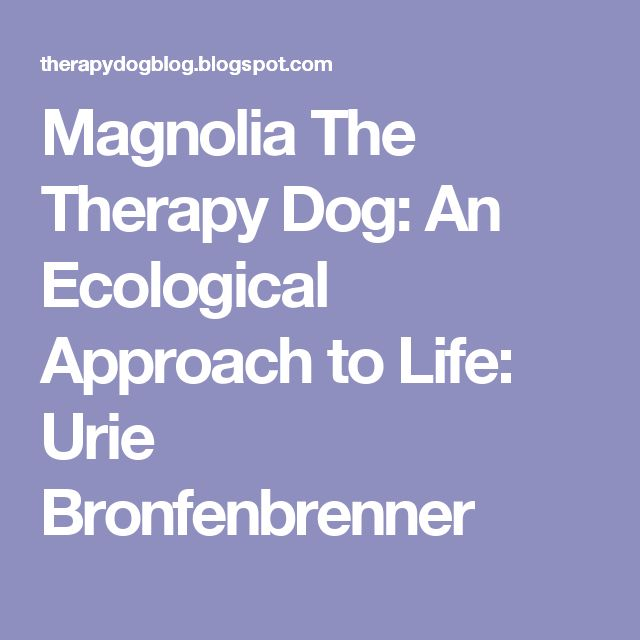 Magnolia The Therapy Dog: An Ecological Approach to Life: Urie Bronfenbrenner