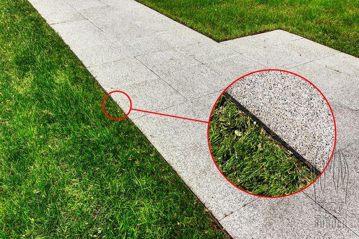 trawnik a ścieżka