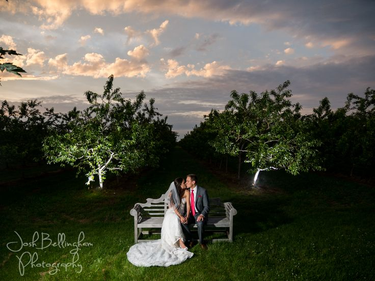 Bride and groom kissing on a beautiful bench in the middle of an orchard. Stunning sunset sky. #JoshBellinghamPhotography
