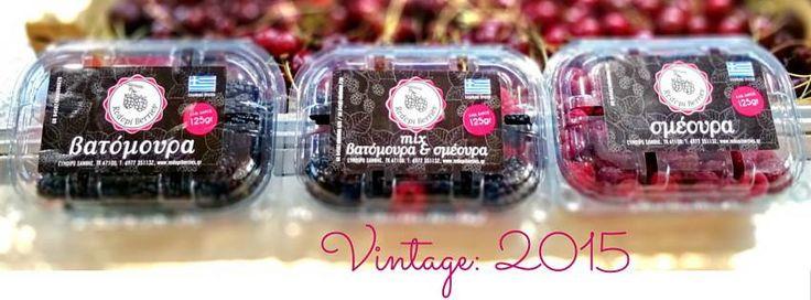 Rodopi Berries