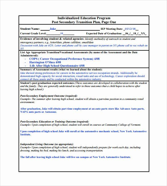 Work Transition Plan Template In 2020 How To Plan Action Plan