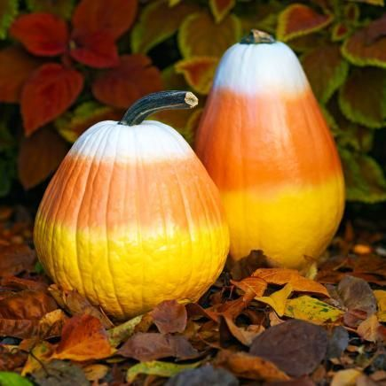 Create these cute, almost-good-enough-to-eat pumpkins with spray paint. More no-carve pumpkin decorating ideas: http://www.midwestliving.com/homes/seasonal-decorating/pumpkin-decorating-projects/page/36/0