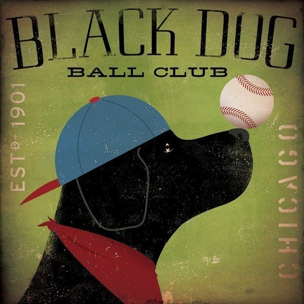 Black Dog Baseball Club Chicago graphic art illustration on canvas 12 x 12 x 1.5 by gemini studio