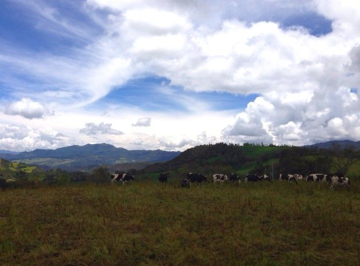 Outside of Bogota, a drive through the Andes mountains provides amazing vistas. We took this shot on our way to Lake Guatavita.