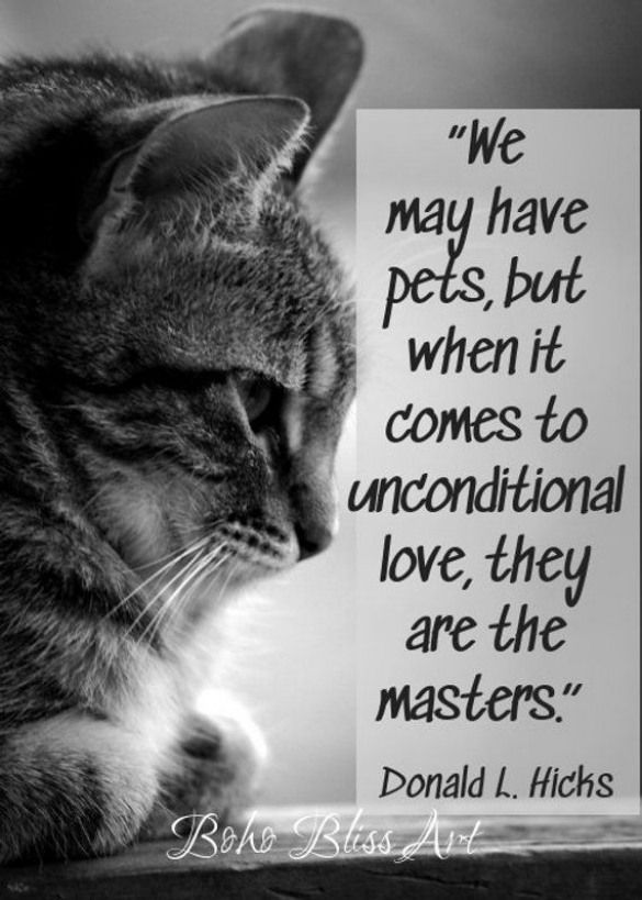 We May Have Pets But When It Comes To Unconditional Love They Are The Masters Pet Quote Wall Art Instant Do Animal Quotes Horse Lover Quote Go For It Quotes