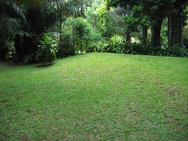 How Much Topsoil Is Needed To Grow Good Grass Lawn Renovation Planting Grass Grass Seed
