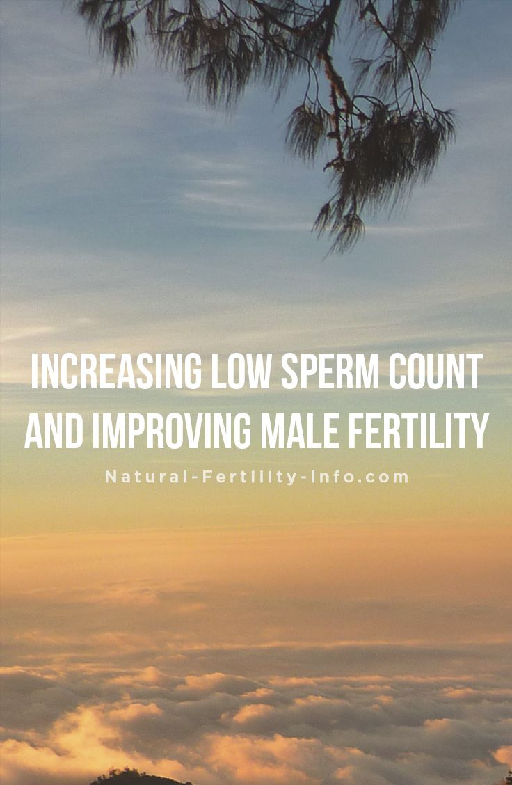 Low Sperm Motility And Getting Pregnant Naturally
