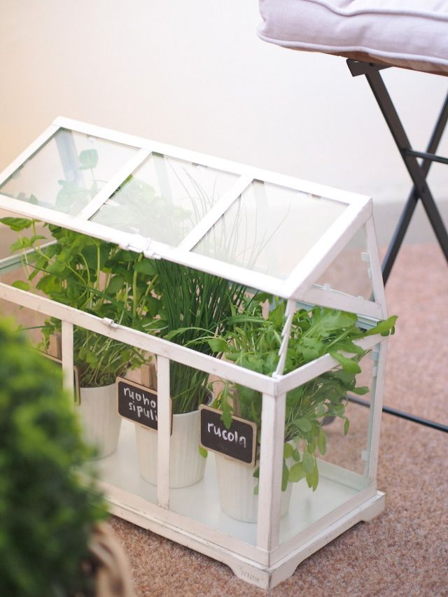 Little Greenhouse from Pentik