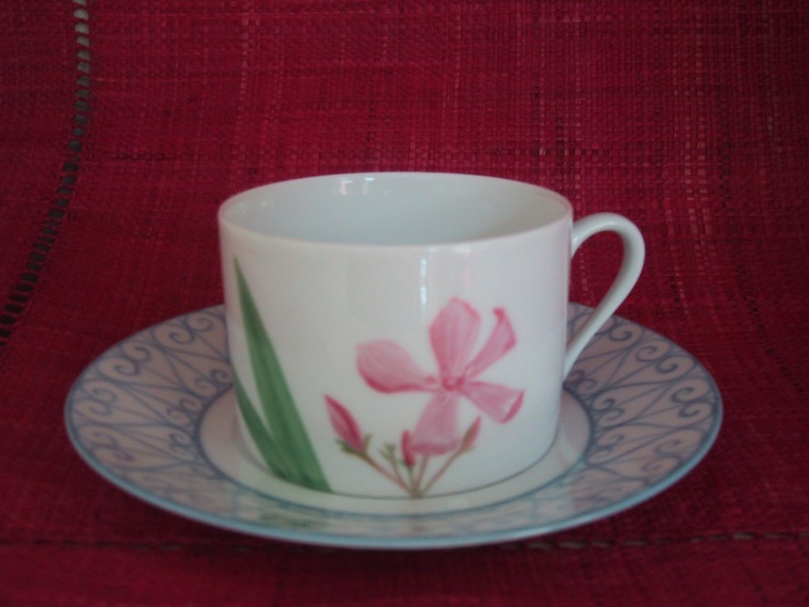 tea cup and saucer, laurel hand painted flower, Limoges porcelain