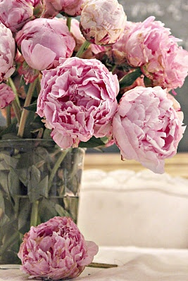 love peonies.: Rose, Pink Flowers, French Country Cottages, Beautiful, Dusty Pink, Gardens, Bloom, French Cottages, Pink Peonies