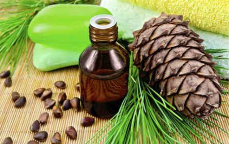 Кедровое масло-лечебные свойства и противопоказания_применение