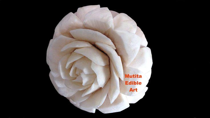 Mushroom | Lotus | Rose Flower