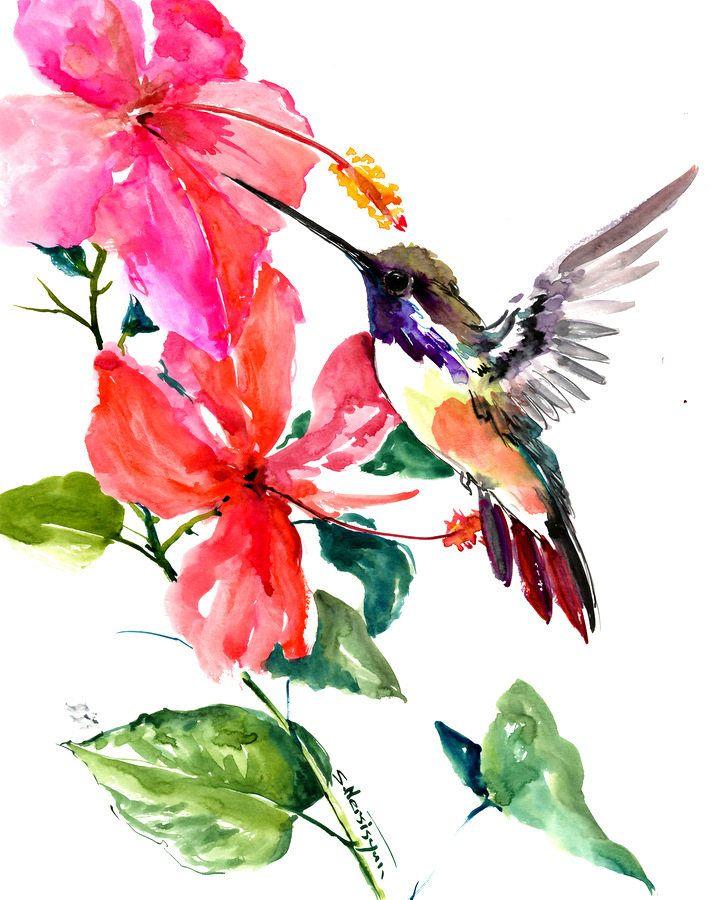 best 25  hummingbird painting ideas on pinterest