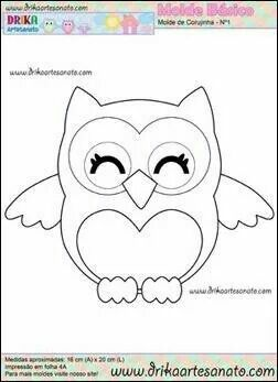 This little dud or dudette is adorable! Thanks for sharing @mcdanie5 I love owls after caring for my exbf's mom who had a collection of over 2000 owls, Iam trying to recreate a shirt I made when I was around 14, am almost 66 now), I found the pattern on E-Bay after all mine from growing up were lost and I had embroidered 2 owls on the pockets and leaves on the yoke. My countrified grandpa saw me embroidering the owls, and he always called me Mitchell (long funny story) and he came up to me…