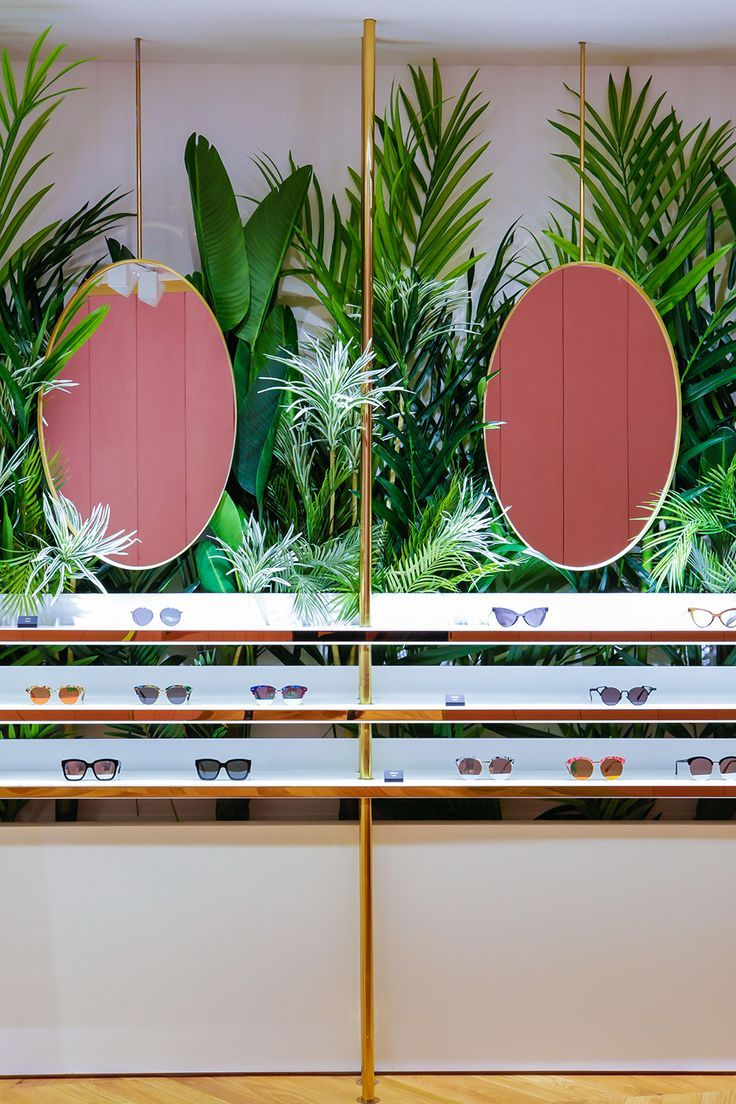 Image result for matching plants in store design
