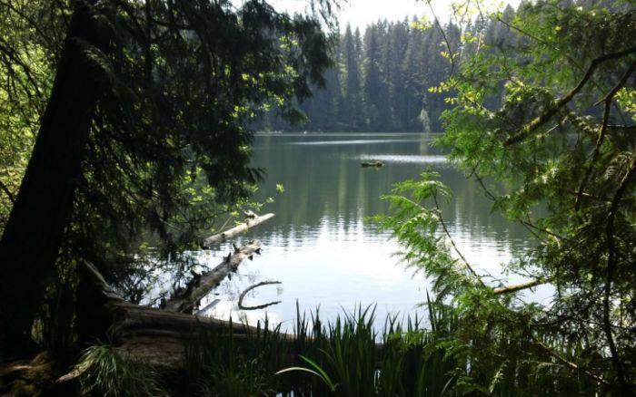 11. Battle Ground Lake, Battle Ground