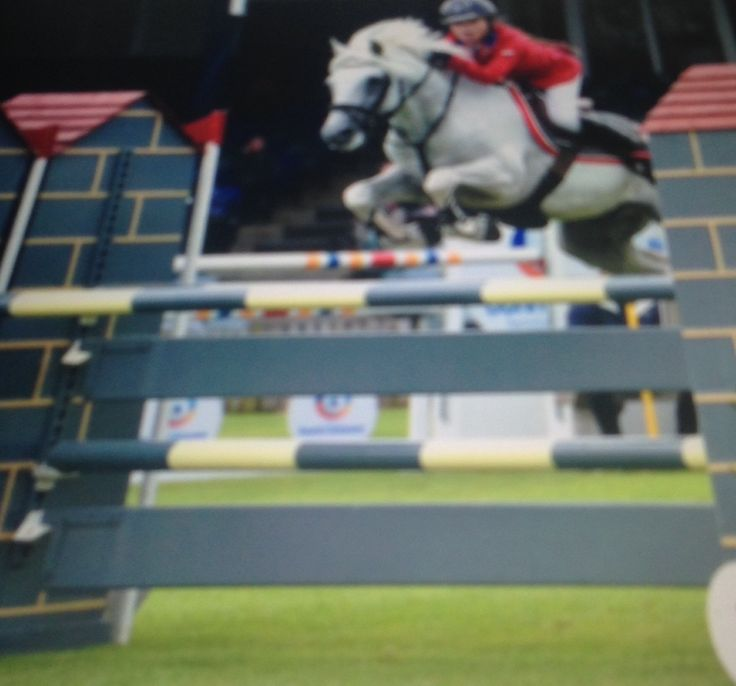 Tintin 6th place Hickstead final