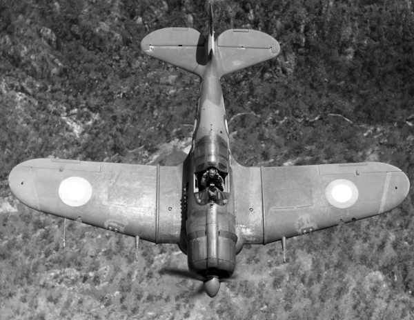 Great view of the Boomerang wing on A46-126 flown by FLT Adrian Clare (Photo Source: Australian War Memorial via ADF-Serials)