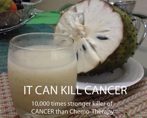"10000 times stronger killer of CANCER than Chemo"".. do share it.. can save many lives, fill up hopes and build confidence in the patients...    The Sour Sop or the fruit from the graviola tree is a miraculous natural cancer cell killer 10,000 times stronger than Chemo.    Why are we not aware of this? Its because some big corporation want to make back their money spent on years of research by trying to make a synthetic version of it for sale."