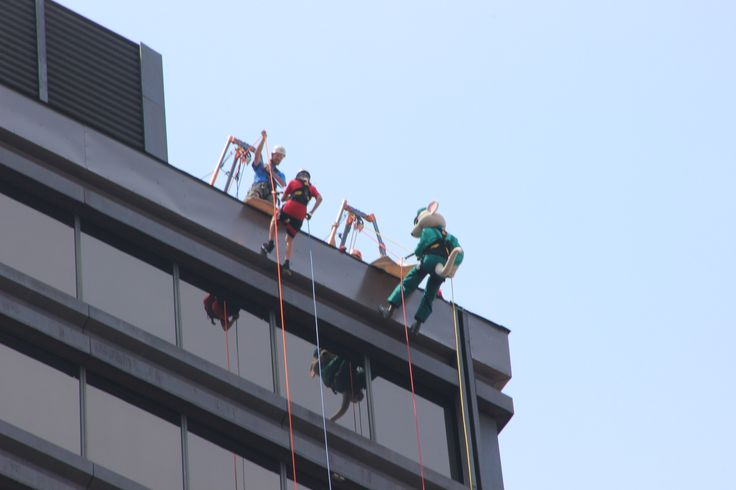 Dexter repels off 25 story office building in downtown Hamilton with his little brother to raise funds for Big Brothers.