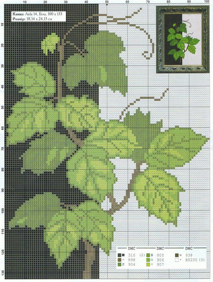 cadru_leaves