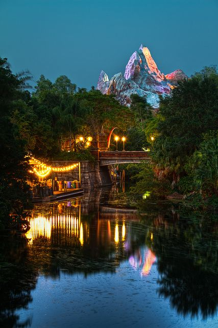 Expedition Everest is a favourite among older kids. Check out guidesbyzoe.com to find out what other attractions you should go on at Disney's Animal Kingdom with your little daredevil!
