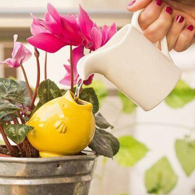 """Ceramic drip irrigator """"Hugo!"""" by the design studio Papaya Objetos - Regador por goteo de cerámica """"Hugo!"""" por el estudio de diseño Papaya Objetos"""