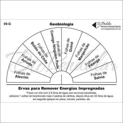 Gráficos 09-G