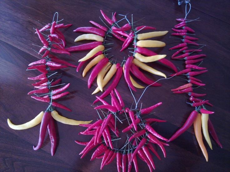 Strung Chili Peppers for drying