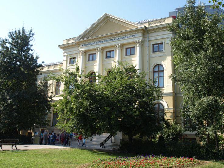 Antipa Museum - Bucharest
