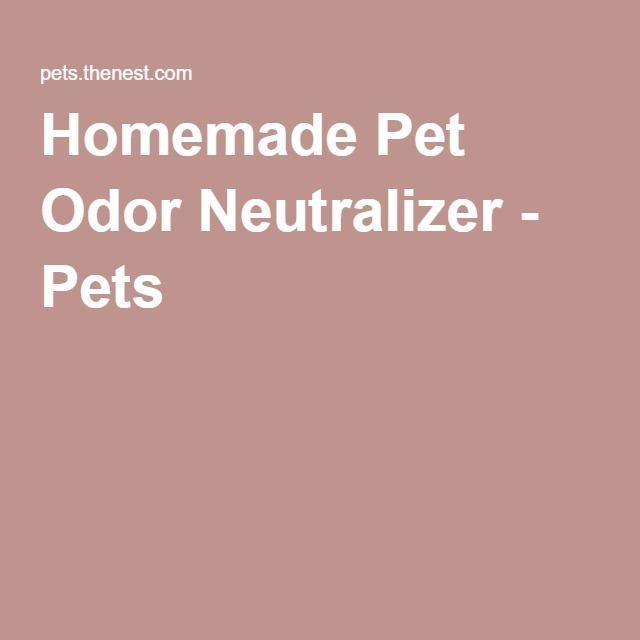 Homemade Pet Odor Neutralizer