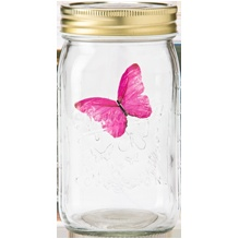 Electronic 'pet' butterfly - Butterfly Collection – Pink Morpho. Gemmy.com