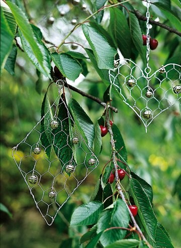 To keep birds away from the temptation of cherries, hearts & diamonds mesh hung from chains dangle from branches.Tthey sway in the wind, ringing their bells frightens birds.