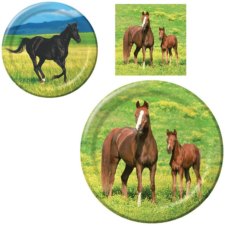 Wild Horses Birthday Party Supplies Bundle: Dinner Plates, Dessert Plates, and Napkins