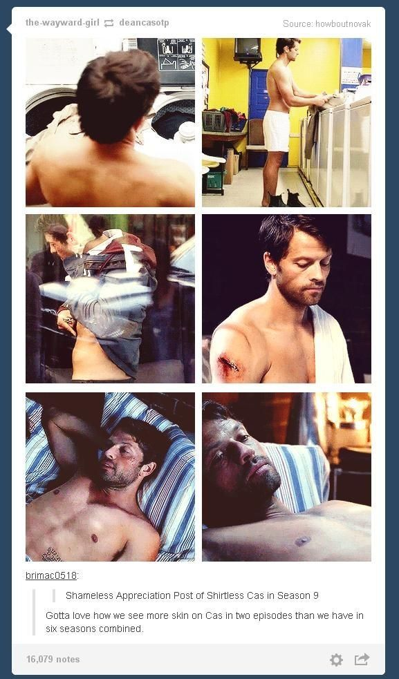 Shameless appreciation post of shirtless Cas in season 9