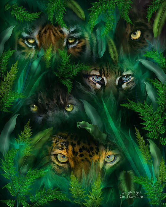 Hidden deep inside, a wild surprise, for you are being watched, by jungle eyes. This painting of several big cat eyes in the rainforest, including a tiger, panther, ocelot, and jaguar, watching from behind jungle leaves is from the 'Spirit Of The Wild' Big Cat collection of art by Carol Cavalaris.