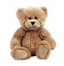 Build a Bear - gift voucher