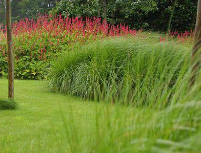Landschappelijke Tuin - Lendelede